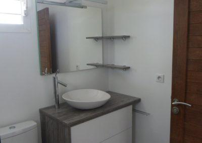 Degorger-wc-Martinique